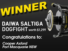 saltiga-dogfight-competition-winner_220x165