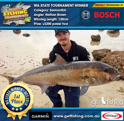 Samsonfish_Amberjack_Nathan-Brown_120cm-