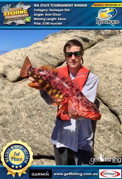 harlequin-fish_Aron-dixon_54cm