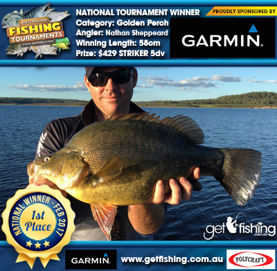 Golden Perch 58cm Nathan Sheppeard Garmin $429 STRIKER 5dv