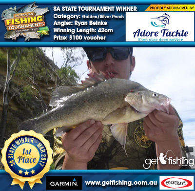 Golden/Silver Perch 42cm Ryan Beinke Adore Tackle $100 voucher