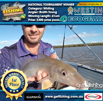 Whiting 41cm Braith Young Ecogear/Westin $300 prize pack