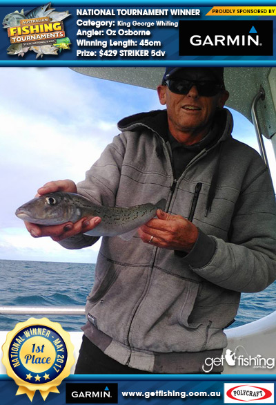 King George Whiting 45cm Oz Osborne Garmin $429 STRIKER 5dv