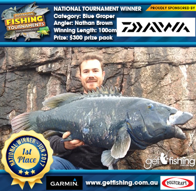 Blue Groper 100cm Nathan Brown Daiwa $300 prize pack