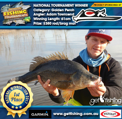Golden Perch 61cm Adam Townsend Lox $380 rod/brag mat