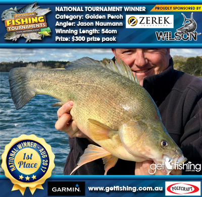 Golden Perch 54cm Jason Naumann Wilson/Zerek $300 prize pack