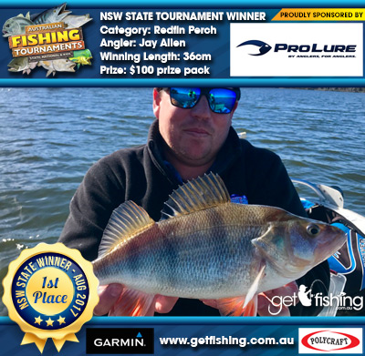 Redfin Perch 36cm Jay Allen Pro Lure Australia $100 prize pack