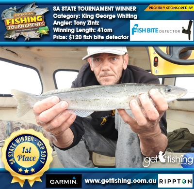 King George Whiting 41cm Tony Zintz Fish Bite Detector $120 fish bite detector