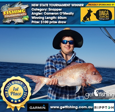 Snapper 60cm Cameron O'Meally Dinga Fishing $100 prize draw
