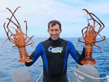 western rock lobster, crays, crayfish, jumbo