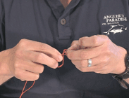 Double clinch knot