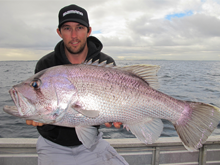 west australian dhufish wa fishing in perth