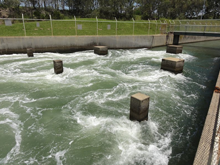 Lake Macquarie Hot Water Outlet, fishing closures