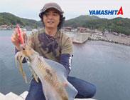 Squid-Jigs-Yamashita_183x140