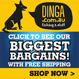 dinga fishing tournament banner