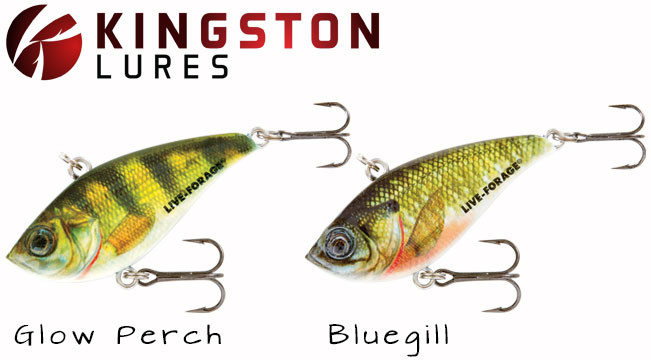 northland-rippin-shad-lure-kingston-lures_2_-651x360