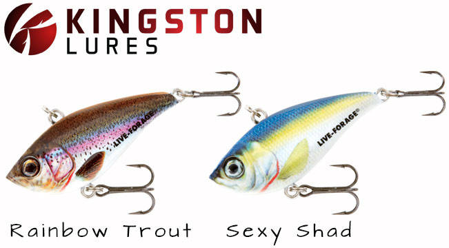 northland-rippin-shad-lure-kingston-lures_5_651x360