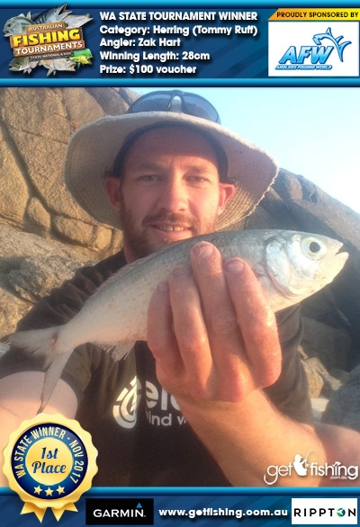 Herring (Tommy Ruff) 28cm Zak Hart Anglers Fishing World $100 voucher