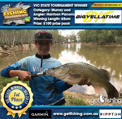 Murray cod 65cm Harrison Parsons Big Yella Time $100 prize pack