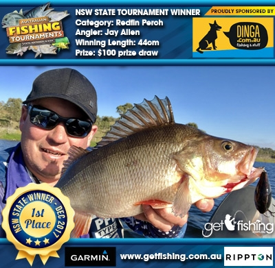 Redfin Perch 44cm Jay Allen Dinga Fishing $100 prize draw