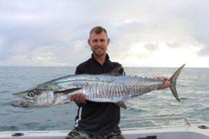 mackerel-cm-barb-115