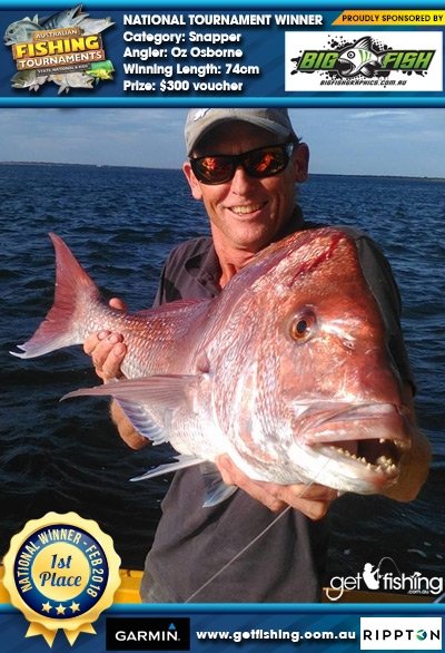 Snapper 74cm Brenton Osborne Bigfish Graphics $300 voucher