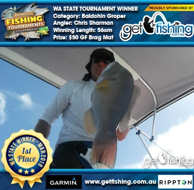 Baldchin Groper 56cm Chris Sharman Get Fishing $50 GF Brag Mat