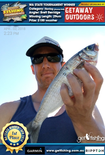 Herring (Tommy Ruff) 29cm Brett Berridge Getaway Outdoors $100 voucher