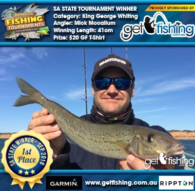 King George Whiting 41cm Mick Mccallum Fish4Cash Fish4Cash