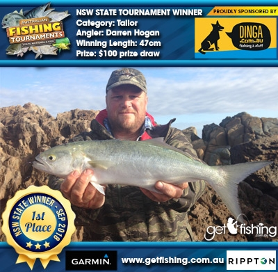 Tailor 47cm Darren Hogan Dinga Fishing $100 prize draw