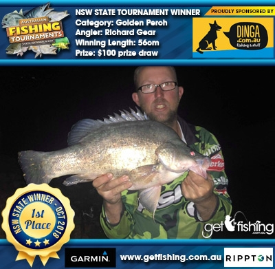 Golden Perch 56cm Richard Gear Dinga Fishing $100 prize draw