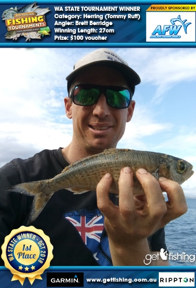 Herring (Tommy Ruff) 27cm Brett Berridge Anglers Fishing World $100 voucher