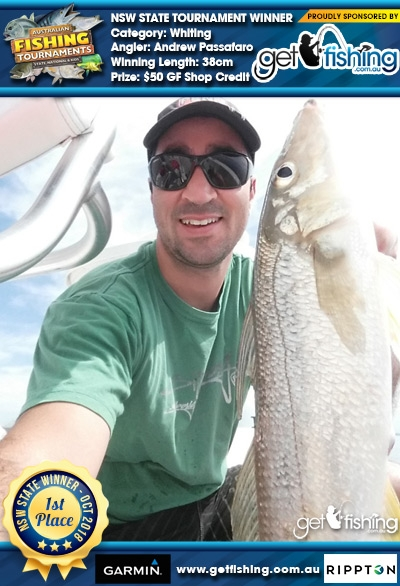 Whiting 38cm Andrew Passafaro Get Fishing $50 GF Shop Credit