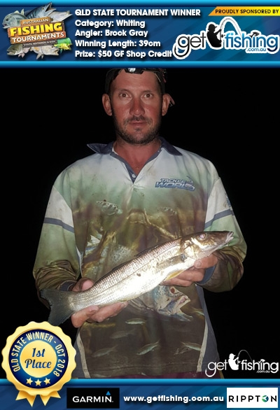 Whiting 39cm Brock Gray Fish4Cash Fish4Cash