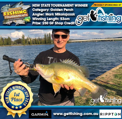 Golden Perch 53cm Mark Mikolajczak Get Fishing $50 GF Shop Credit